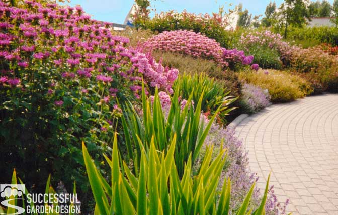 What Makes A Planting Scheme Great?