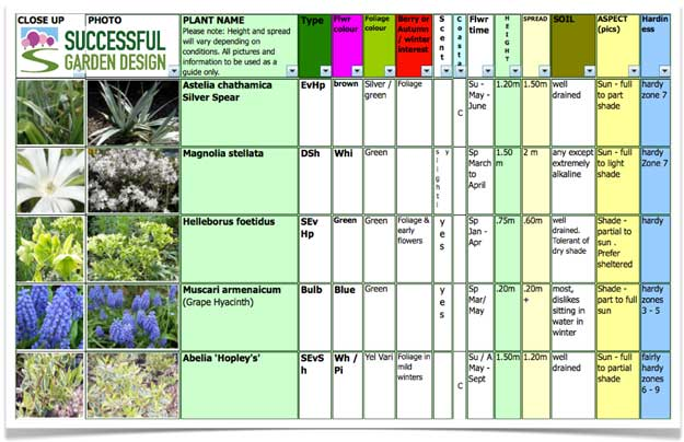 Plant Selection – Marvellous in March