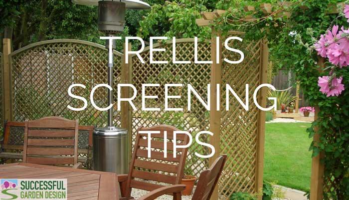 Trellis screening tips for the garden